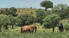 Aquí la tierra - Veterinarios ecológicos: una gran labor