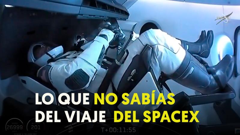 SPACEX: primera semana de la vuelta de la NASA al espacio