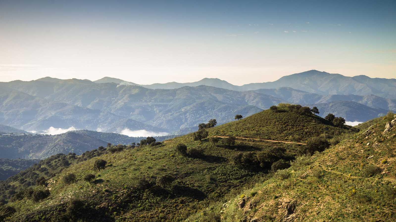 80 cm - Sierra de Grazalema - ver ahora