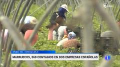 Un brote de COVID-19 en Marruecos afecta a trabajadoras en dos empresas españolas
