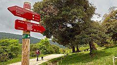 Alternativas turísticas en Navarra para incentivar el turismo interior tras la pandemia