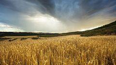 Chubascos y tormentas localmente fuertes en el Ebro y en el Sistema Ibérico