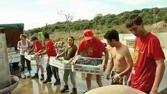 Una bodega mallorquina integra a jóvenes con discapacidad intelectual en el proceso de elaboracion del vino