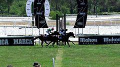 Hípica - Circuito nacional de carreras de caballos, desde el Hipódromo de la Zarzuela