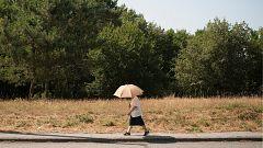 Temperaturas significativamente altas en el sur y zonas de Castilla-La Mancha