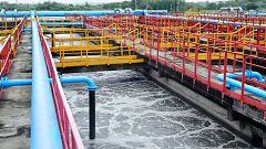 """Simón, sobre el estudio que detecta covid en aguas residuales en 2019: """"Hay que valorarlo con mucho cuidado"""""""
