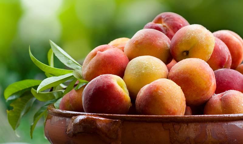 ¿Sabías que los melocotones y las nectarinas ayudan a nuestro sistema inmune?