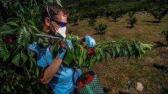 Las cooperativas agroalimentarias celebran su día internacional plantando cara al coronavirus