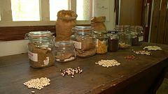 Aquí la Tierra - La cápsula del tiempo de nuestra abuelas... ¡guarda semillas!