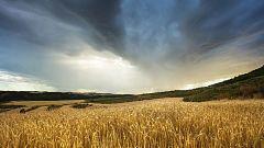Chubascos y  tormentas en Pirineos, Cataluña y sistema Ibérico oriental