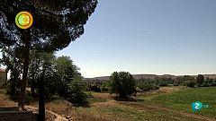 En Clave Rural Cortijo San Isidro