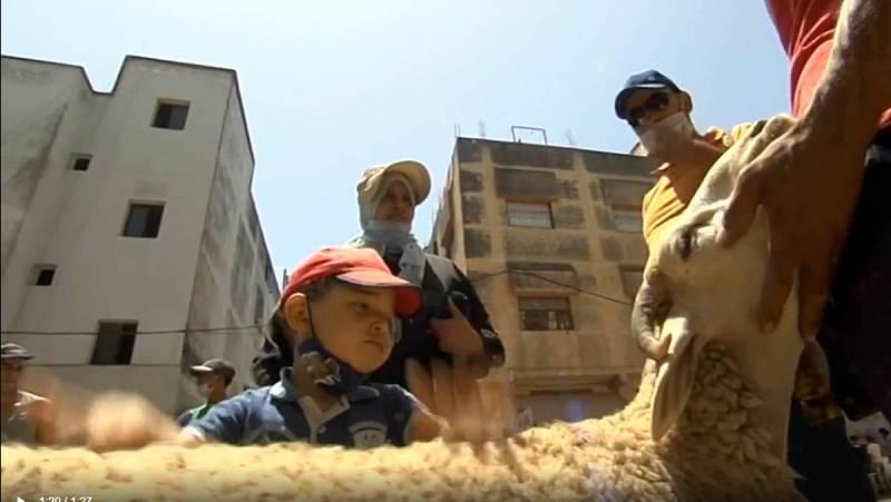 El coronavirus también desluce la Fiesta del Cordero en Marruecos