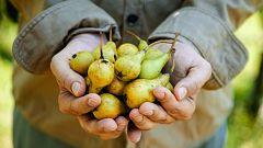 España Directo - ¿Has pedido una cosecha a domicilio?