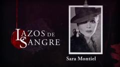 Lazos de sangre - Sara Montiel, resumen de su vida