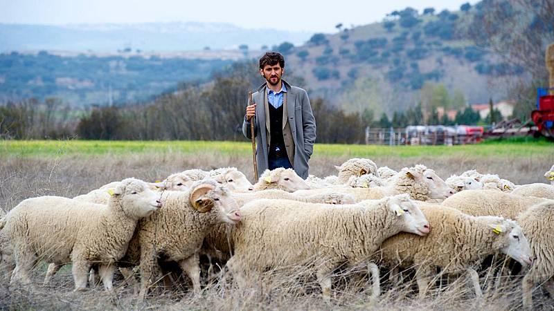 Somos Cine - Las ovejas no pierden el tren - Ver ahora