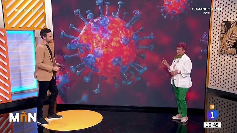 La Mañana -  ¿Cómo podemos distinguir el coronavirus de la gripe?