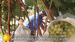Agrosfera - 05/09/20