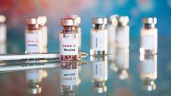 España Directo - Crisálidas para fabricar vacunas
