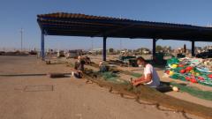 Aquí la Tierra - Sanlúcar de Barrameda nos cuenta su tradición pesquera: ¿cómo es la pesca de arrastre?