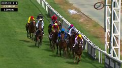 Hípica - Circuito de carreras de caballos desde el Hipódromo de La Zarzuela (Madrid)