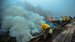 El Pantanal de Brasil, el mayor humedal del planeta, sufre los peores incendios de las últimas décadas