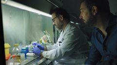 El cazador de cerebros - Las pandemias que vienen