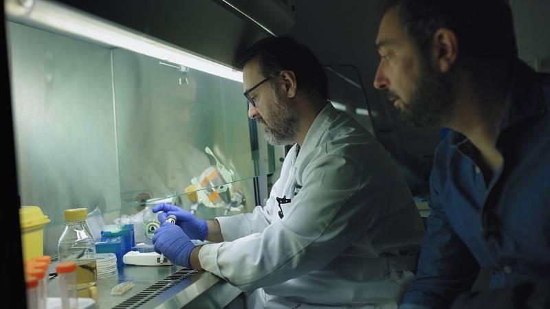 El cazador de cerebros - Las pandemias que vienen - ver ahora
