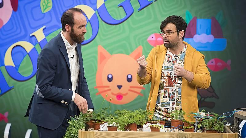 Órbita Laika - Biología con Ricardo Moure - Las plantas sienten
