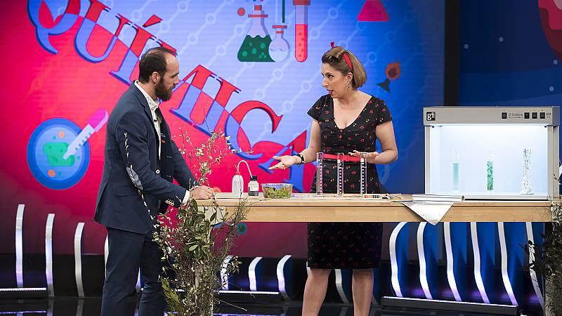 Órbita Laika - Química con Deborah García - La fotosíntesis