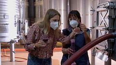 Aquí la Tierra - ¿Cómo se produce el vino una vez la uva ya está dentro de la bodega?