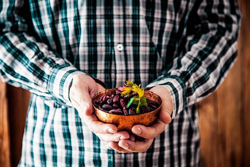 Aquí la Tierra - El carico: la legumbre de Comillas