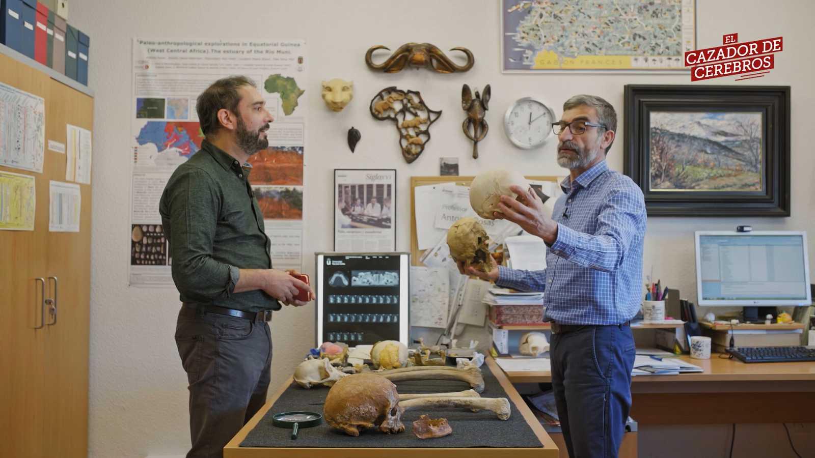 Vídeo resumen del cuarto episodio de la 4ª temporada de 'El cazador de cerebros' sobre el legado de los neandertales