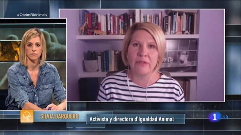 Obrim fil | Les condicions de vida dels animals en granges industrials