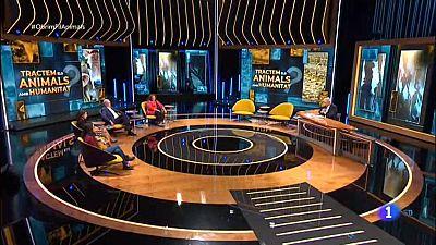 Obrim fil - Tractem als animals amb humanitat?
