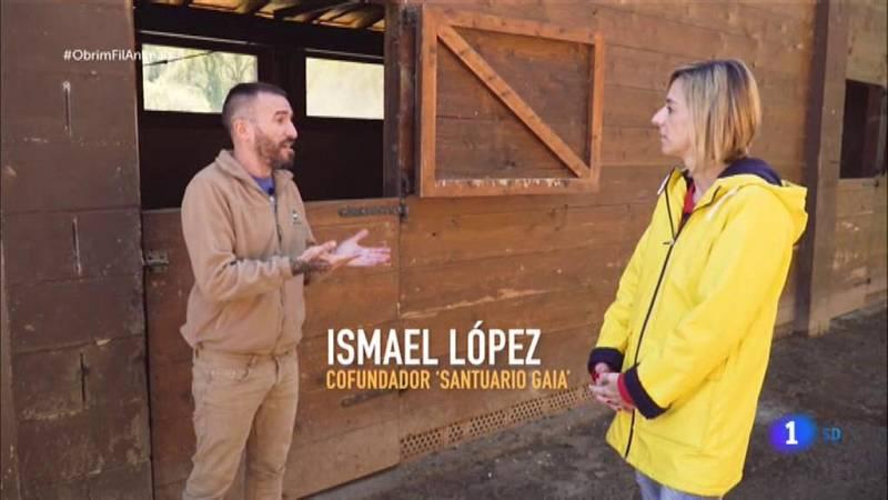 Obrim fil - Ana Boadas visinta la Fundación Santuario Gaia