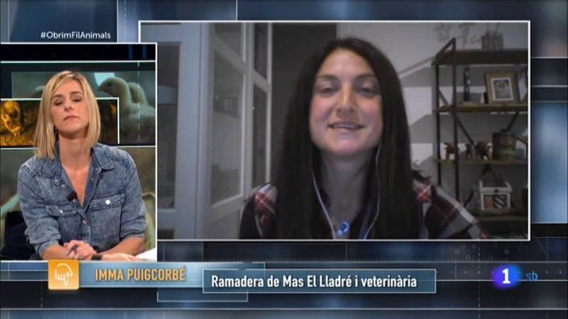 Obrim fil | La ramaderia natural a Catalunya: el Mas el Lladré