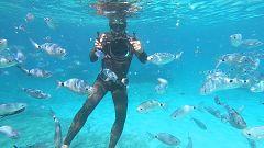 Aquí la Tierra - Formentera: ¿cómo era el mar que la baña hace 70 años?