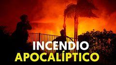 California: gran incendio forestal y van 8.880 este año