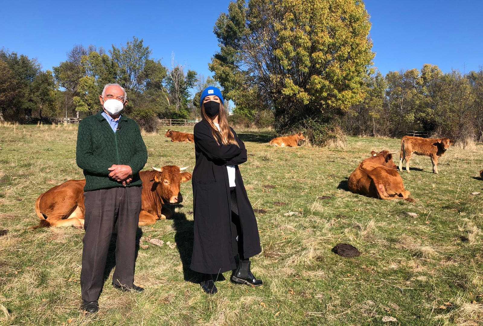 Aquí la Tierra - Las vacas de El Berrueco tienen nombre propio