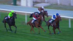 Hípica - Circuito nacional de carreras de caballos. Desde el hipódromo de La Zarzuela (Madrid)