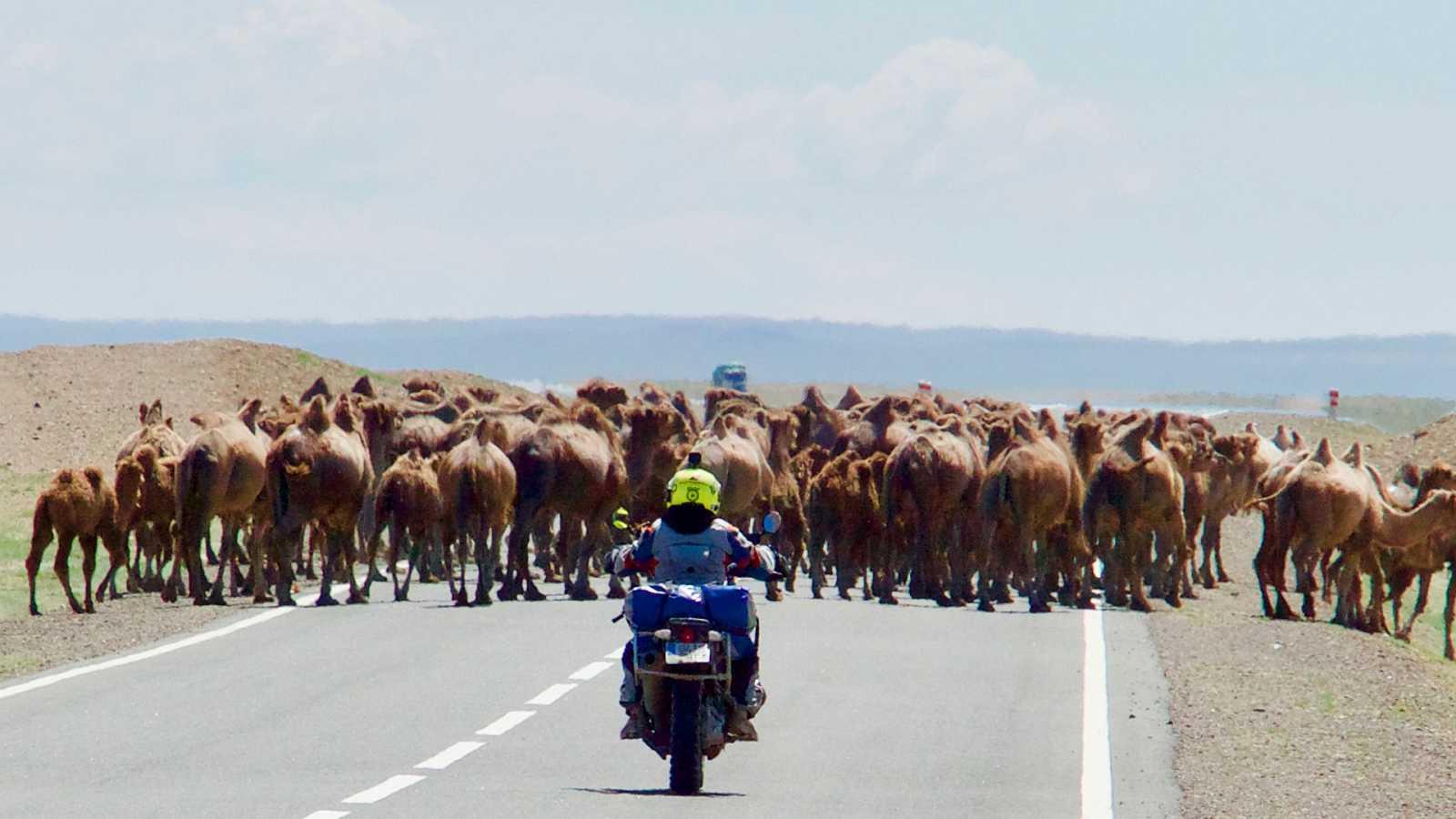Diario de un nómada - Las huellas de Gengis Khan: Navegando la infernal estepa de Mongolia - ver ahora