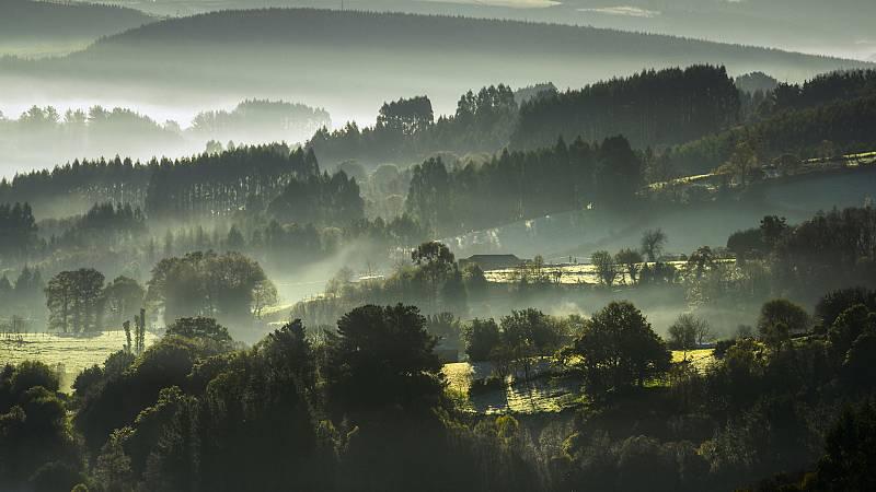 Nieblas extensas en la Meseta, Galicia y depresiones del nordeste, con posibilidad de ser localmente persistentes en l