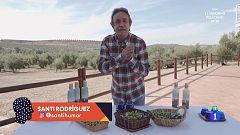 Santi Rodríguez nos enseña cómo se hace una cata de aceite de oliva