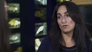 Laura Miralles, biologa e investigadora marina