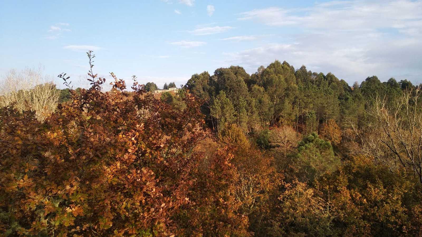 Predominio de vientos de componente sur en Galicia y el Cantábrico