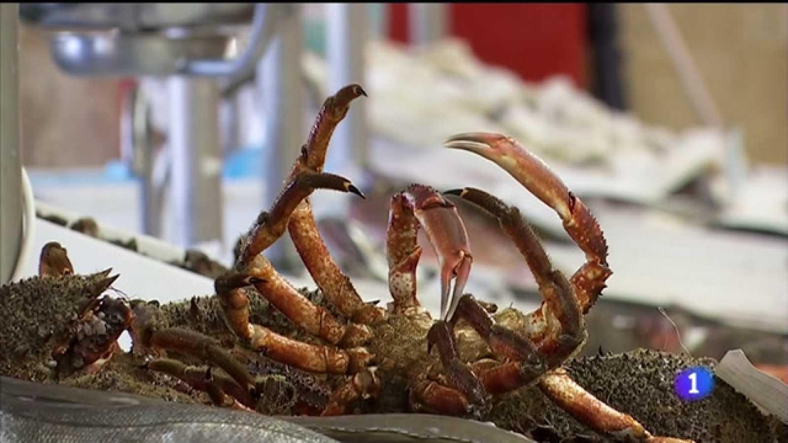 O peche da hostalaría pola covid afunde os prezos de peixes e mariscos