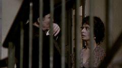 El momento de cine de David Ilundain: 'Una jornada particular', de Ettore Scola