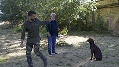 El Paisano - Fer, un perro experto en inglés y alemán