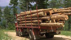 Los camioneros - Quince toneladas de madera y una mujer