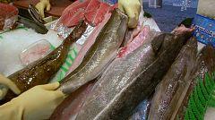 Aquí la Tierra - ¡Conocemos un pescado nuevo! ¿Cómo es el fogonero?